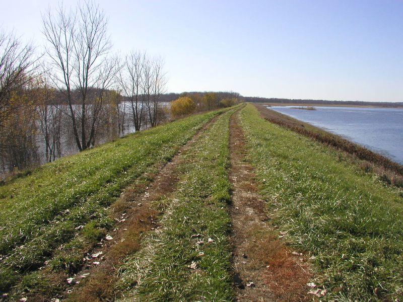 ThompsonLake-river-levee-NOV10-2009