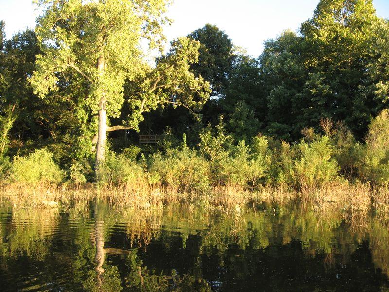 Chautauqua NWR-Eagle Bluff Access from canoe