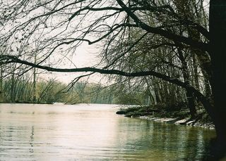Mouth of Spoon River-April08