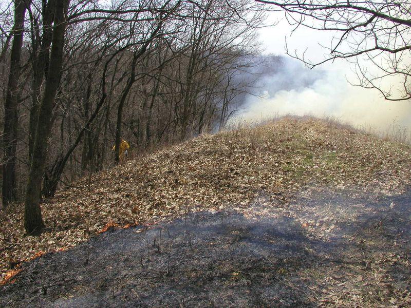 Crevecoeur HP-Mar-30-2010-burn#5
