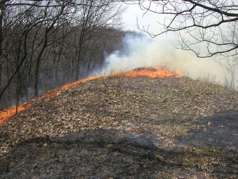 Crevecoeur HP-Mar-30-2010-burn#7