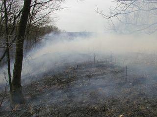 Crevecoeur HP-Mar-30-2010-burn#8