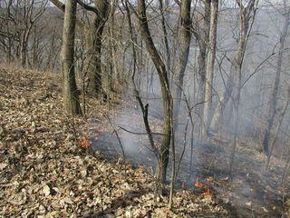 Crevecoeur HP-Mar-30-2010-burn#1