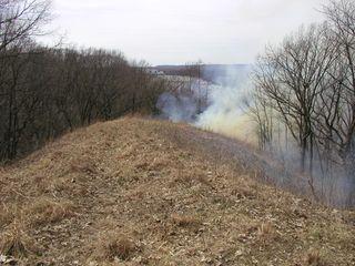 Crevecoeur HP-Mar-30-2010-burn#3