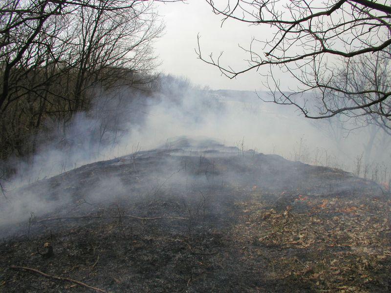 Crevecoeur HP-Mar-30-2010-burn#9