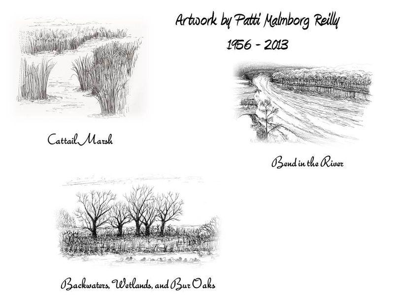 Patti Artwork-Bend in River-cattails-wetlands