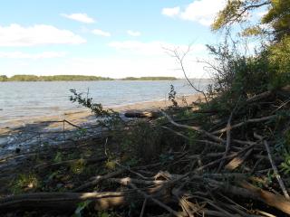 Quiver Lake facing Chautauqua NWR