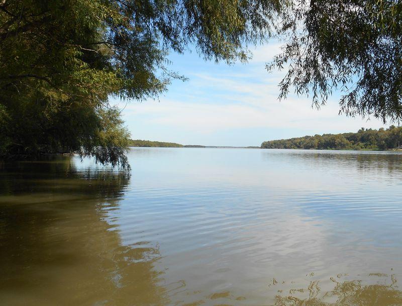Quiver Lake Looking North#2