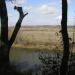 Sangamon River and Revis Hill Prairie Nature Preserve