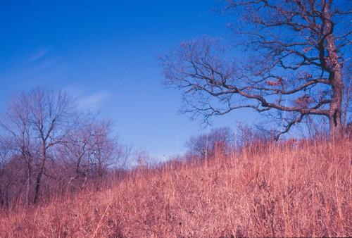 Hopewell Hill Prairies Nature Preserve
