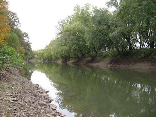 Spoon River at Harper-Rector Woods Nature Preserve